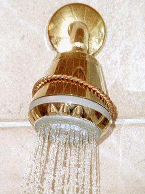 Wb-Shower-head